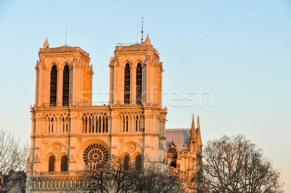 Notre-Dame de Paris cathedral at sunset Stock photo © dutourdumonde
