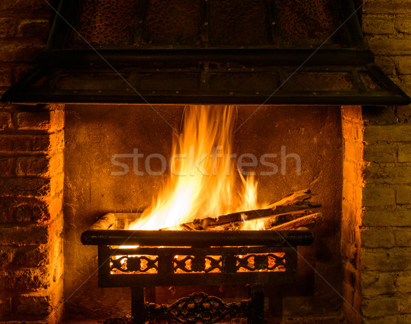 Log fire in a chimney Stock photo © dutourdumonde
