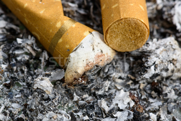 Cigarette butts Stock photo © dutourdumonde