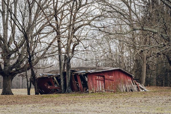 Opuszczony czerwony stodoła zimą niebo trawy Zdjęcia stock © dutourdumonde