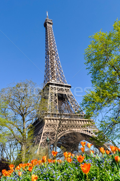 Эйфелева башня Париж Франция весны здании город Сток-фото © dutourdumonde