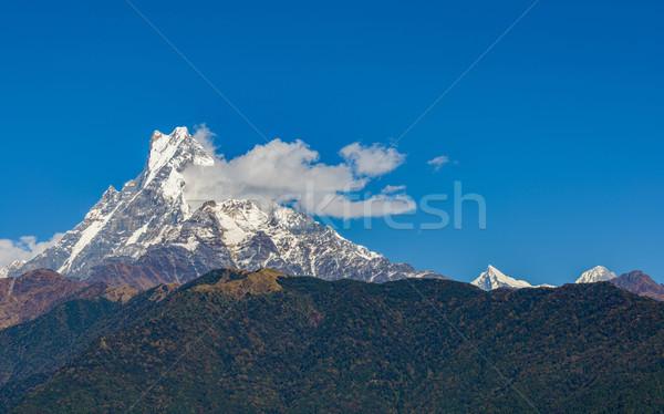 Ryb ogon Nepal region charakter śniegu Zdjęcia stock © dutourdumonde