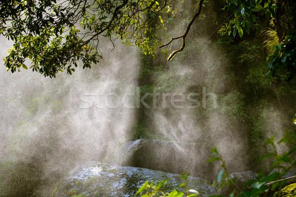 水 スプレー 日光 滝 森林 自然 ストックフォト © dutourdumonde