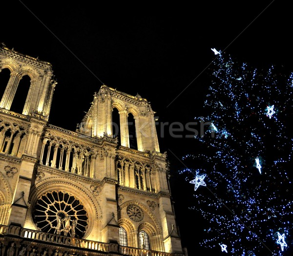 Notre-Dame de Paris at Christmas Stock photo © dutourdumonde