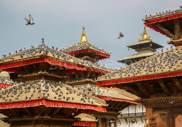 Stok fotoğraf: Kare · Nepal · tapınak · çatılar · tüy · kuşlar