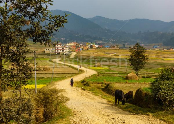 Onverharde weg leidend Nepal dorp weg natuur Stockfoto © dutourdumonde