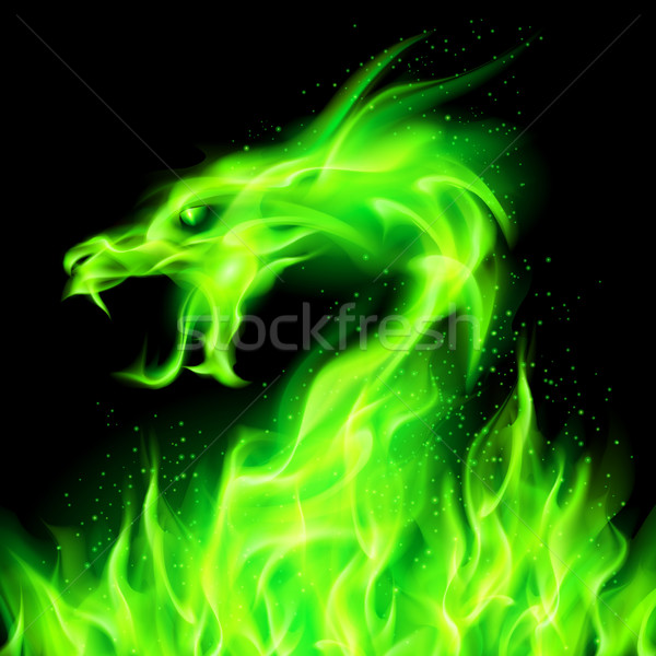 Fire dragon. Stock photo © dvarg