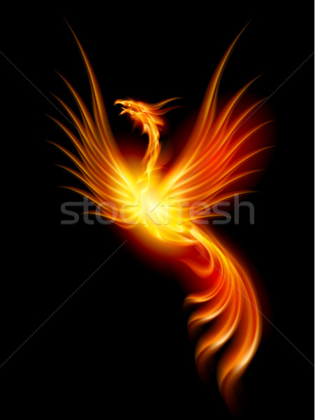 Stock photo: Burning phoenix