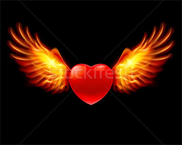 Kalp ateşli kanatlar renk örnek siyah Stok fotoğraf © dvarg
