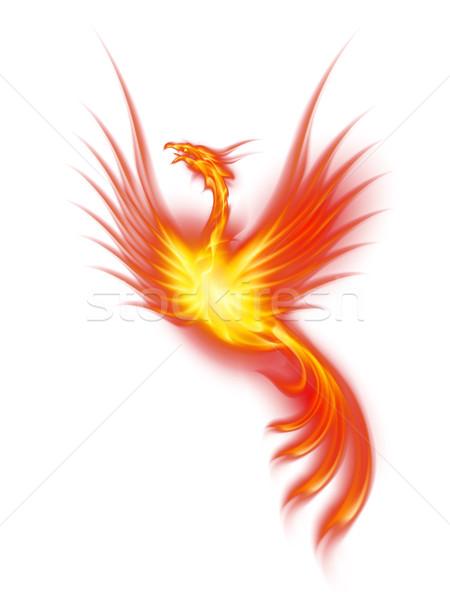 Brandend phoenix versie mooie illustratie geïsoleerd Stockfoto © dvarg