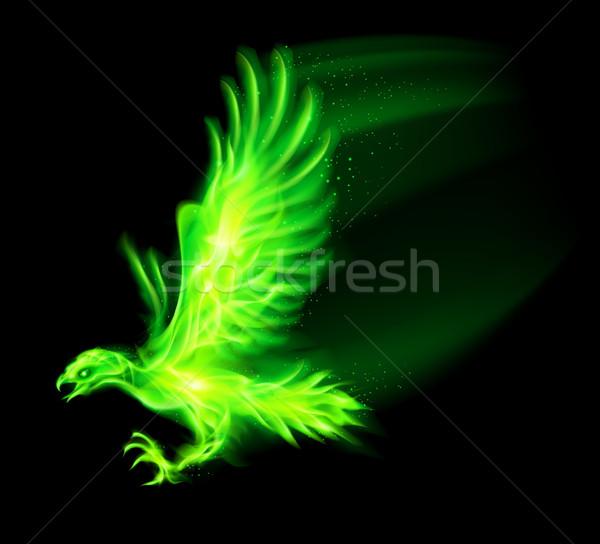 Fire hawk. Stock photo © dvarg