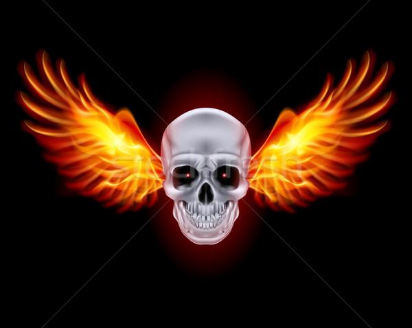 Foto stock: Crânio · fogo · asas · preto · abstrato · metal