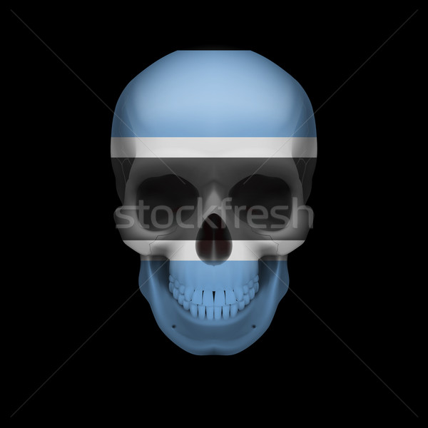 Botswana flag skull Stock photo © dvarg