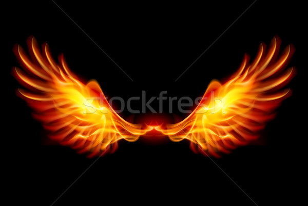Stock fotó: égő · szárnyak · láng · tűz · illusztráció · fekete