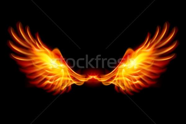 Brandend vleugels vlam brand illustratie zwarte Stockfoto © dvarg