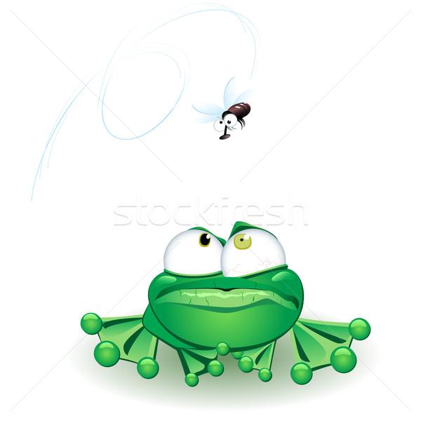 Béka arc természet zöld vicces légy Stock fotó © dvarg
