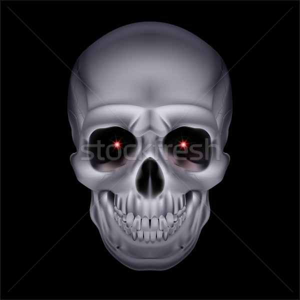 Chrome mystic skull. Stock photo © dvarg