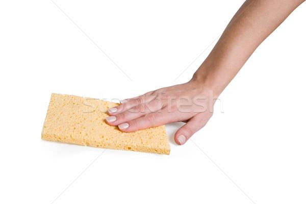 Strony gąbki szmata kobiet żółty usługi Zdjęcia stock © dvarg