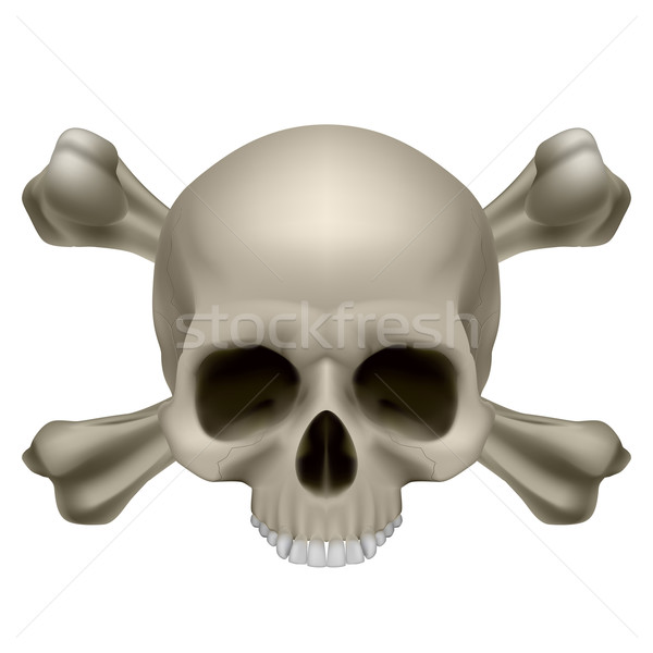 Human skull and crossbones Stock photo © dvarg