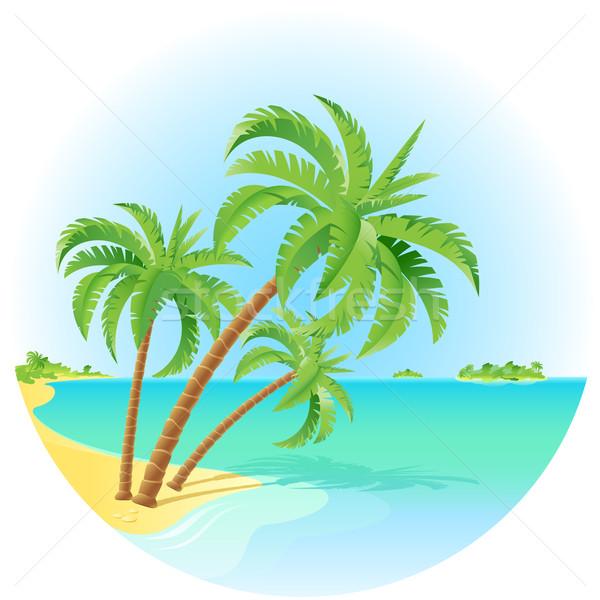 Cocotier arbres île illustration blanche Photo stock © dvarg