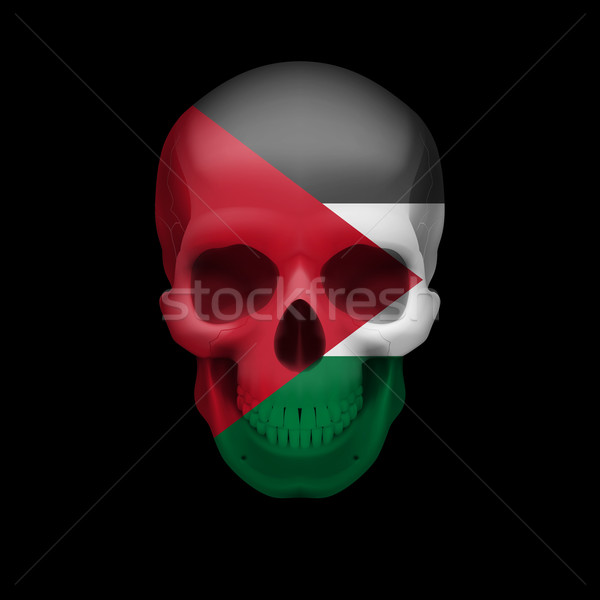 Palestinian flag skull Stock photo © dvarg