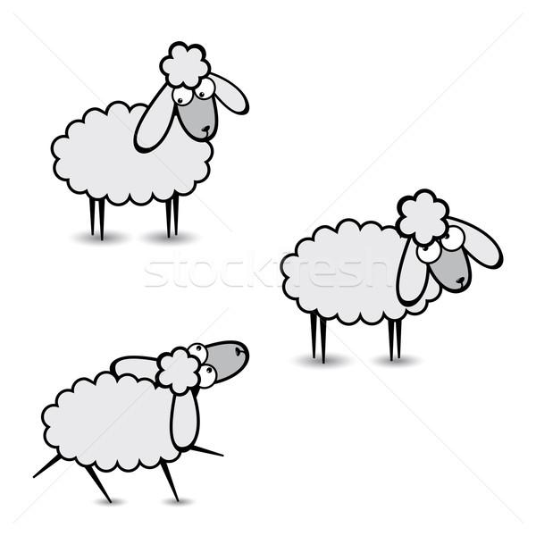 Stockfoto: Grijs · schapen · drie · abstract · twee · illustratie