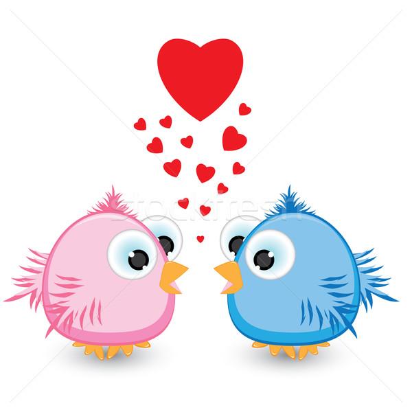 Dwa wróbel miłości ilustracja biały kiss Zdjęcia stock © dvarg