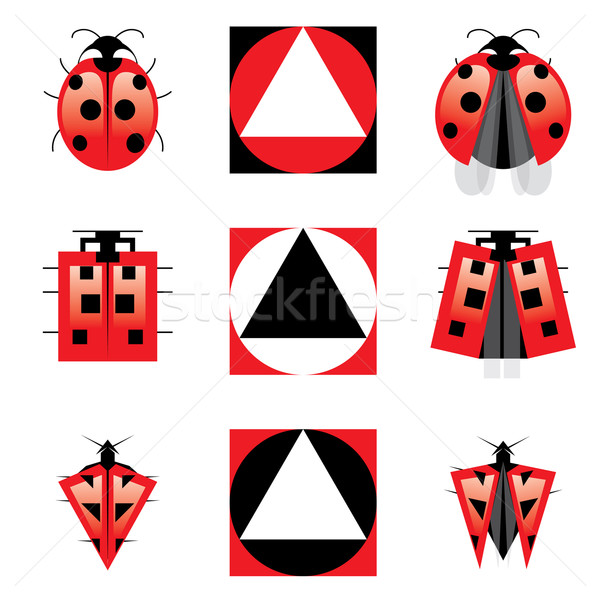 Conceptual Evolution of Ladybug Stock photo © dvarg