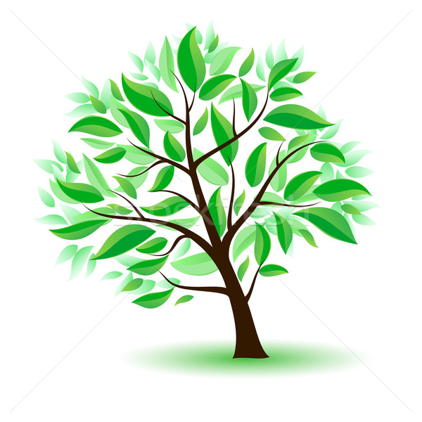 Stylized tree with green leaves. Stock photo © dvarg