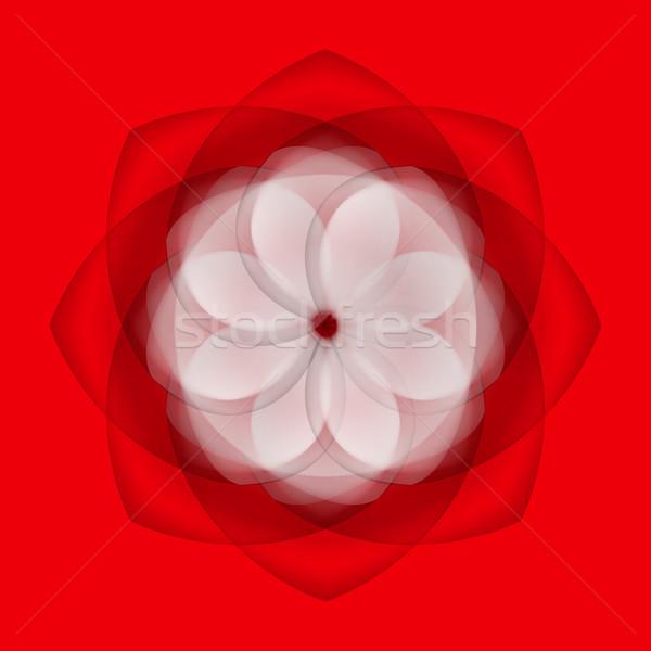 Streszczenie kwiat czerwony przezroczysty elementy Zdjęcia stock © dvarg