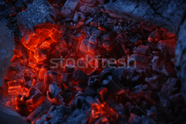 Fire coals Stock photo © dvarg