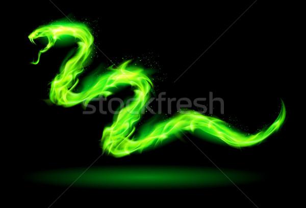 Photo stock: Vert · feu · serpent · illustration · noir · nature
