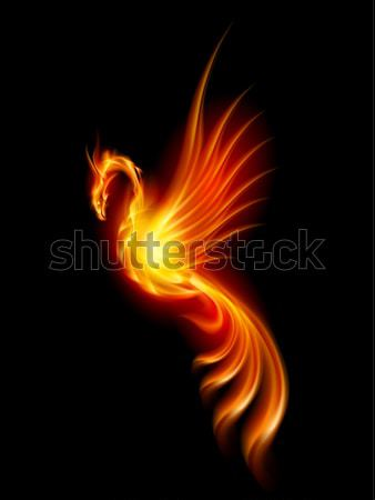 Brandend phoenix illustratie geïsoleerd zwarte brand Stockfoto © dvarg