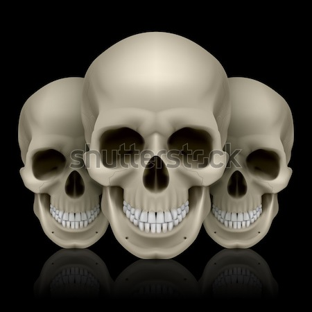 Crystal skull in two colors Stock photo © dvarg
