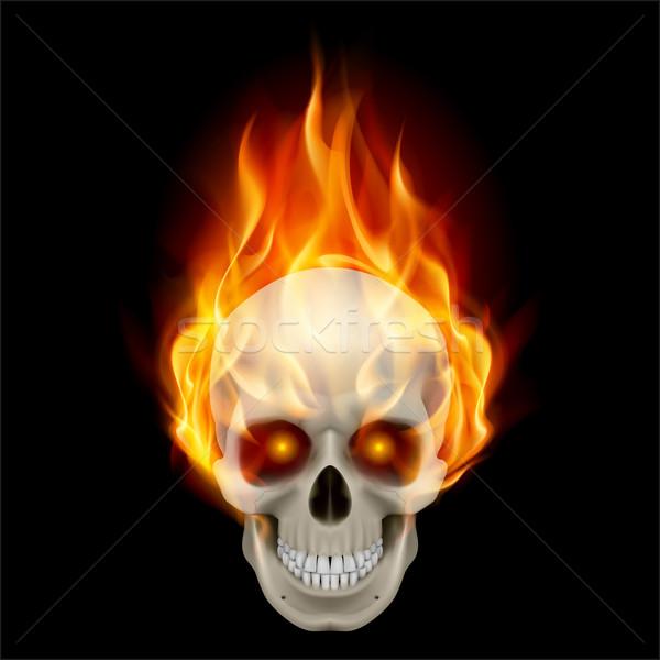 Burning skull Stock photo © dvarg