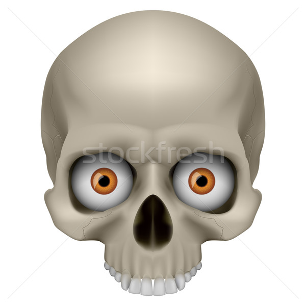 Freaky Human Skull Stock photo © dvarg