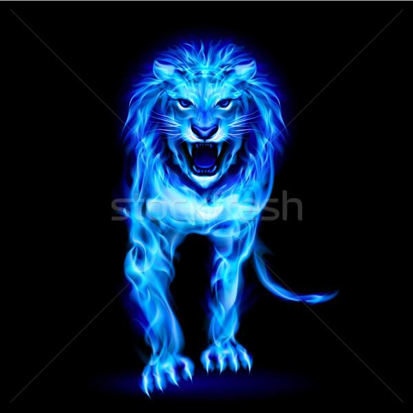 Kék tűz oroszlán izolált fekete absztrakt Stock fotó © dvarg