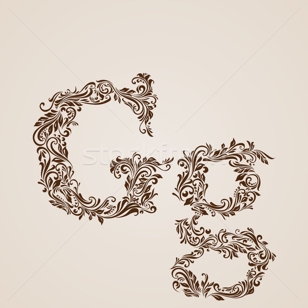 Decorated letter g Stock photo © dvarg
