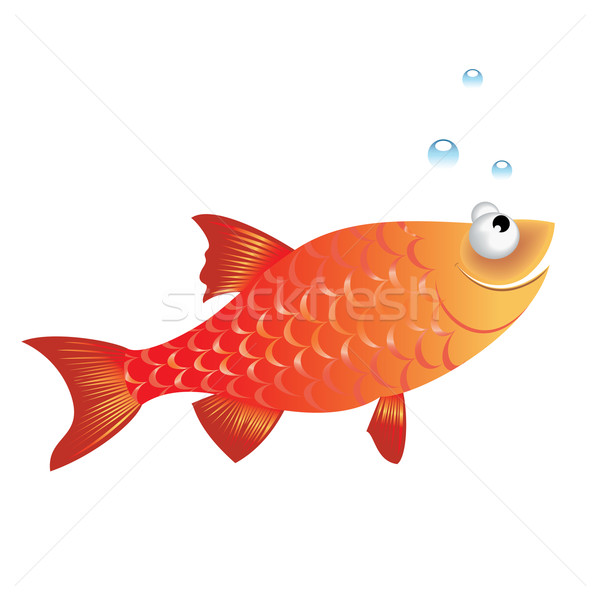 Funny fish Stock photo © dvarg