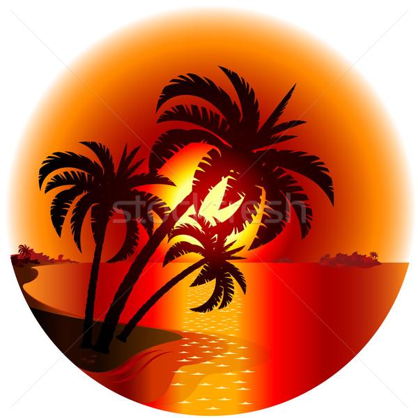 Zonsondergang tropisch eiland illustratie witte strand boom Stockfoto © dvarg
