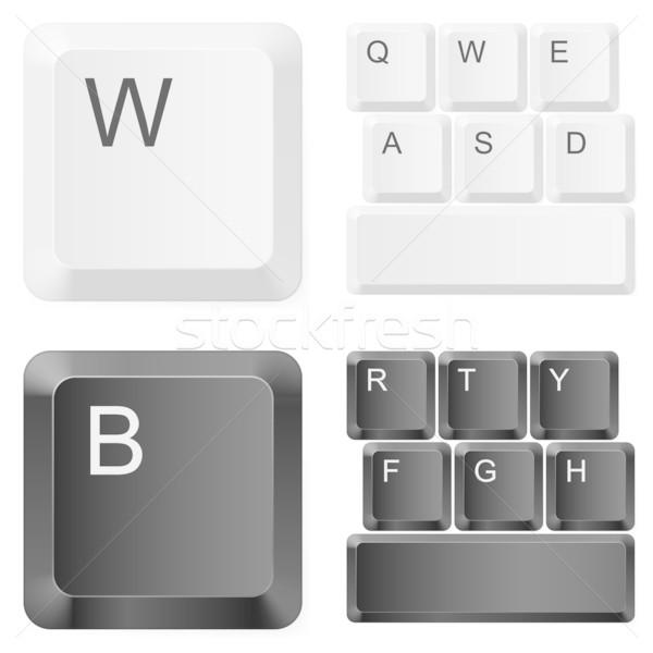 Witte zwarte computer sleutels illustratie technologie Stockfoto © dvarg
