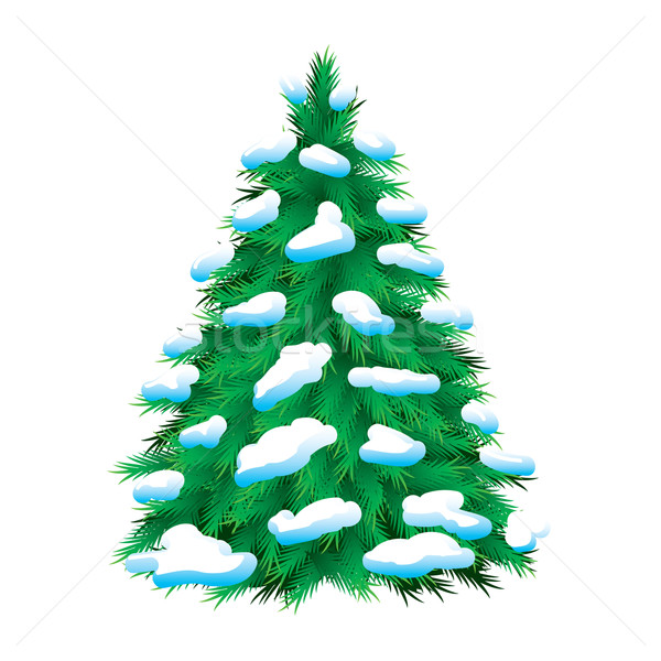 Green fur-tree covered with snow Stock photo © dvarg