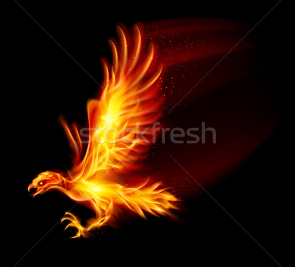 Stock photo: Flaming Hawk