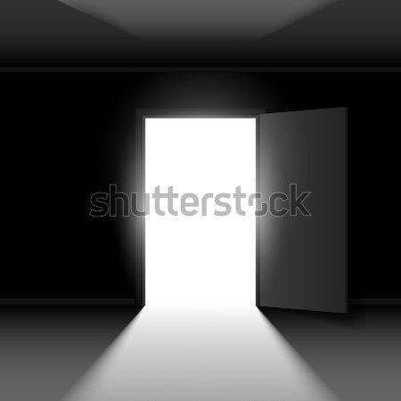 Verdubbelen Open deur licht illustratie zwarte lege Stockfoto © dvarg