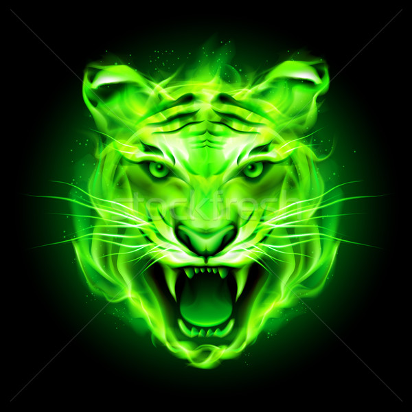 Green fire tiger. Stock photo © dvarg