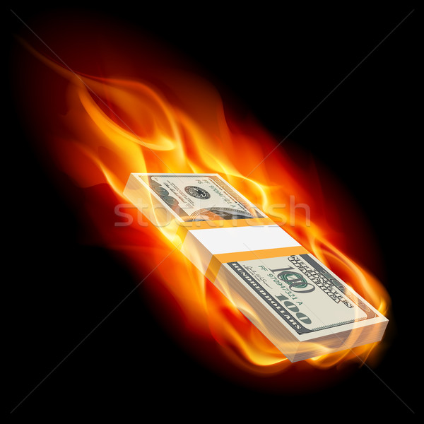 Burning dollars Stock photo © dvarg
