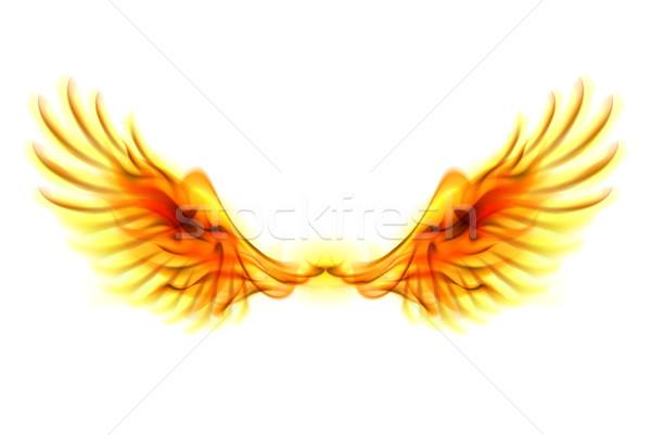 Stockfoto: Brand · vleugels · illustratie · witte · ontwerp · schoonheid