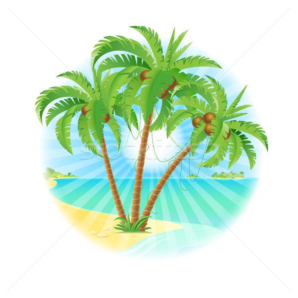 Cocotier arbres île soleil illustration blanche Photo stock © dvarg