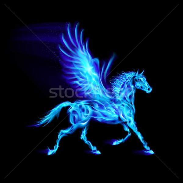 Blue fire Pegasus. Stock photo © dvarg
