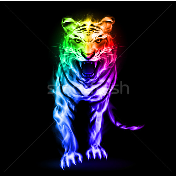 Spectrum fire tiger Stock photo © dvarg